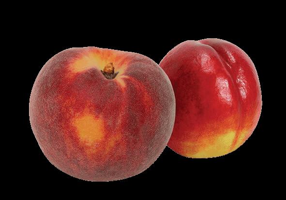 peaches-nectarines